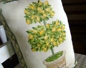 Luxury Decorative Throw pillow - Lemon Tree