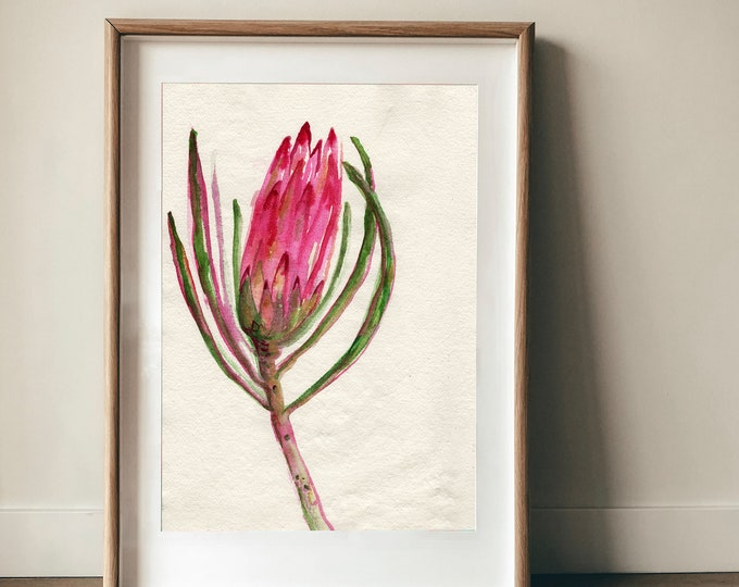 Simply Quiet Protea Wall Art Print botanical art decor