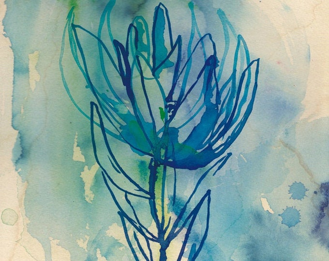 Blue Wash Protea Wall art print - botanical watercolour