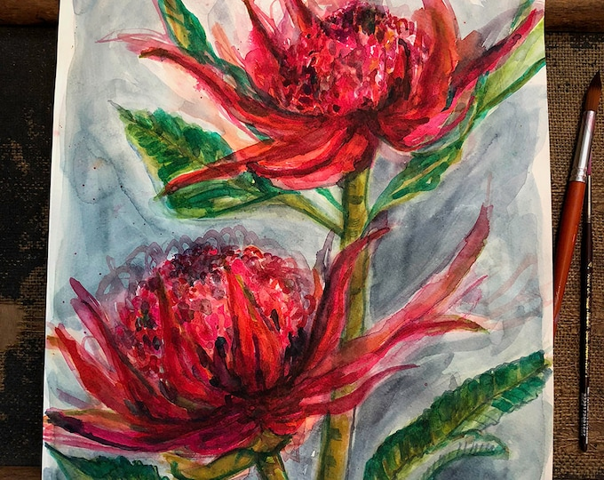 Original watercolour painting Two Waratahs artwork by Paula Mills Australian Native Botanical Wall Art
