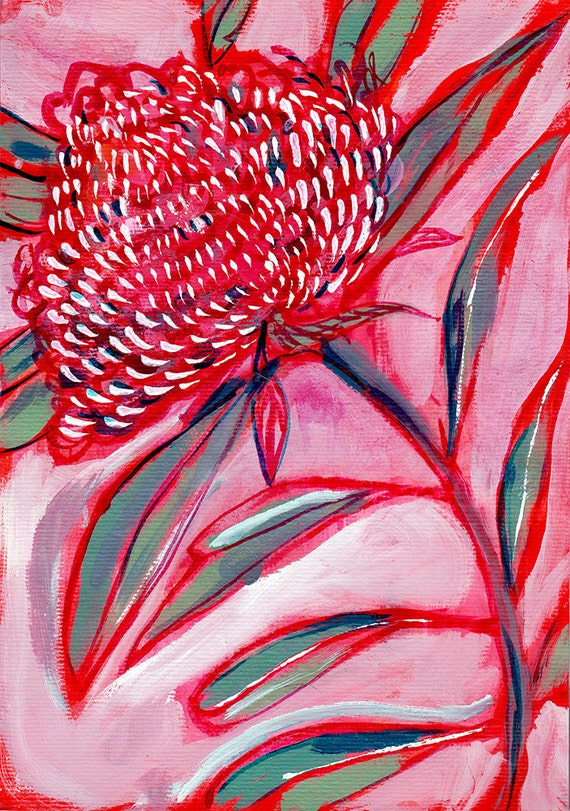 Pink and Red Botanical Study No.1 Archival Wall Art Print Australian Native art prints