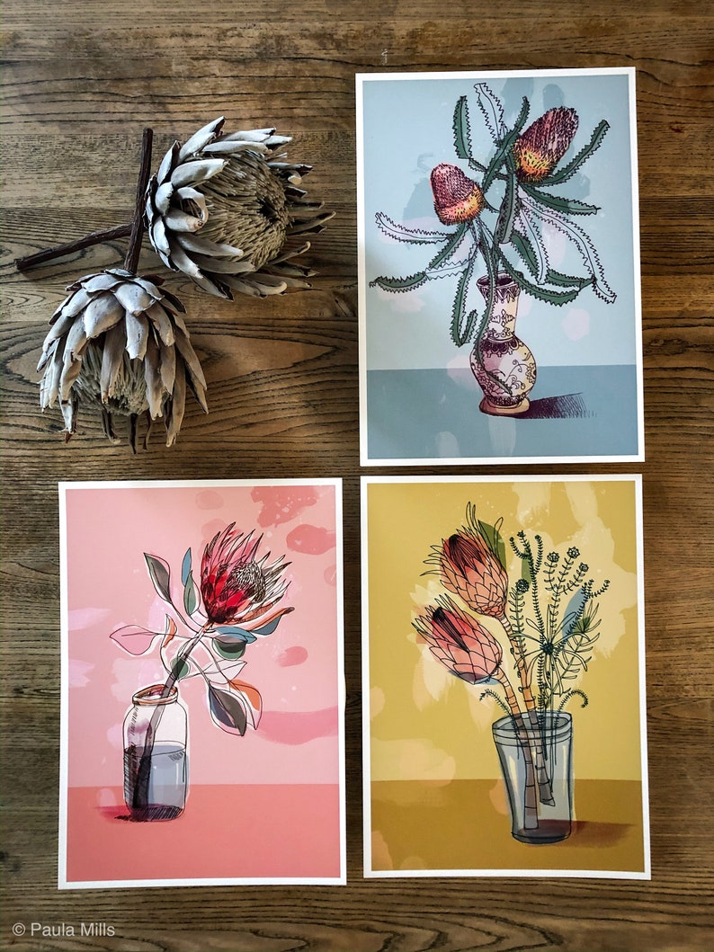 Set of 3 Australian Native Art Prints  botanical illustration image 0
