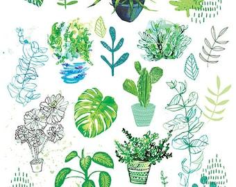All My Plants - Digital Download Paula Mills Illustration Instant Printable Wall Art  decor