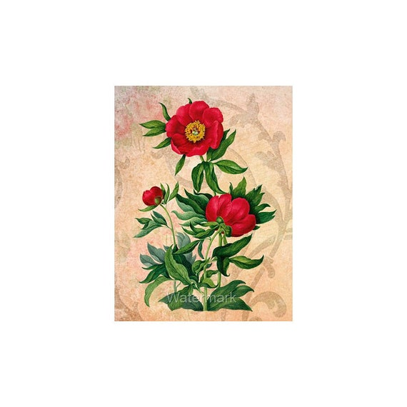 P3 Peony Flowers Collage Art Fabric Crazy Quilt Block Free Shipping World Wide