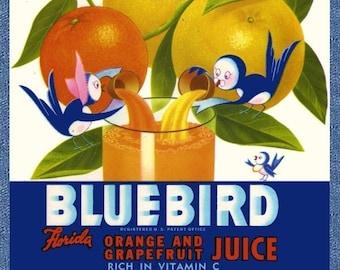 Blue Birds Florida Fruit Juice Refrigerator Magnet