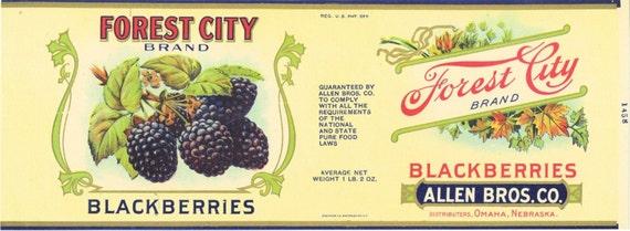 Forest City can label Co Allen Bros Omaha Nebraska strawberries