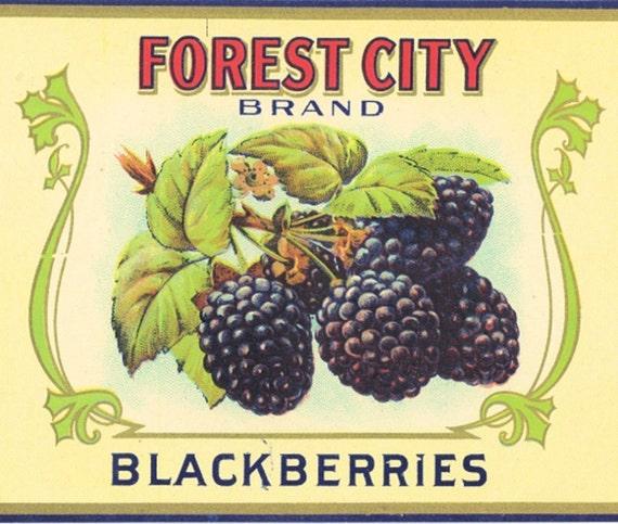 FOREST CITY RASPBERRIES Tin Can Label original 1920s ALLEN BROS OMAHA NEBRASKA