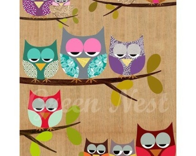 Colorful Owl posters on wood background