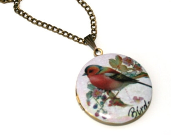 Bird Locket Necklace, Bird Necklace, Woodland, Animal Jewelry