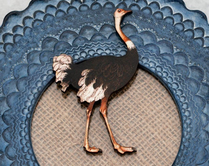 Ostrich Brooch, Wooden Ostrich Badge, Animal Brooch, Wood Jewelry, Bird Bird Brooch