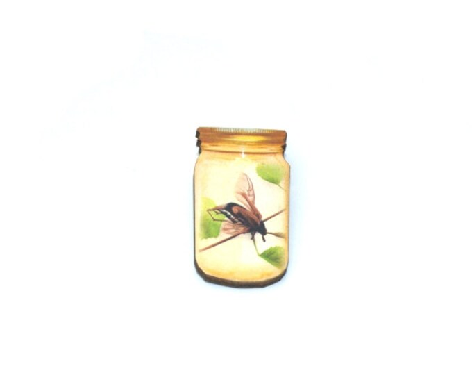Fly Brooch, Insect in a Jar Illustration, Wood Jewelry, Insect Brooch, Animal Brooch