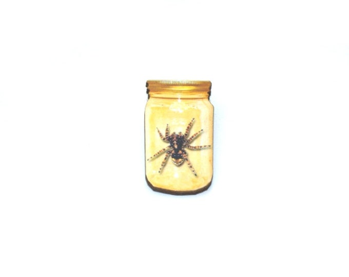 Spider Brooch, Insect in a Jar Illustration, Wood Jewelry, Insect Brooch, Animal Brooch