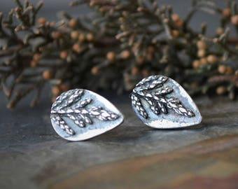 Cedar Branch Earrings, Botanical Evergreen Plant Studs, Tear Drop Shape in Fine Silver