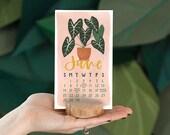 2020 Stump Calendar *Refill* // 1canoe2