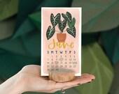 2020 Stump Calendar // 1canoe2 // Hand illustrated