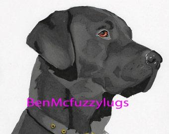 Labrador Digital Dog Portrait, Custom dog drawing, Personalized Dog Art, Lab Dog Sketch, Crossbreed art
