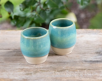 Turquoise and White Wine Cup Whiskey Cup Tumbler