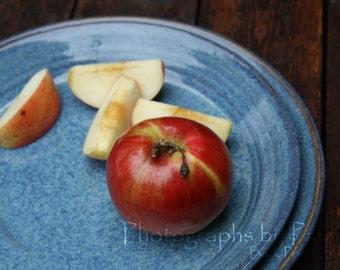 Stoneware Blue Platter Plate Serving Dish