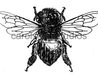 Thermofax Screen Honey Bee