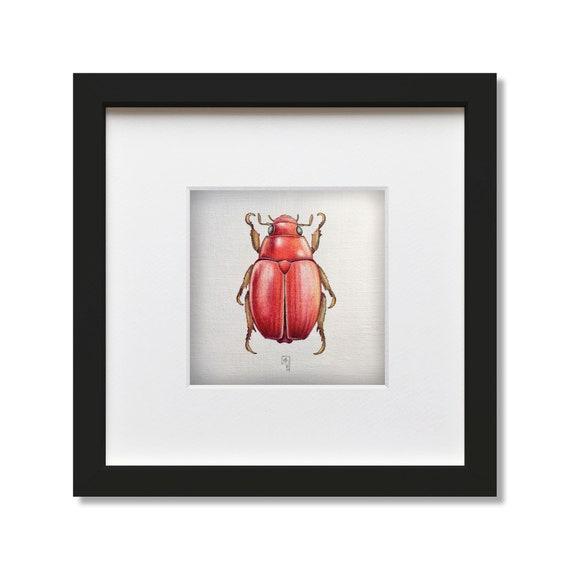 Australian Christmas Beetle.Red Australian Christmas Beetle Coloured Pencil And Ink Pen Original Artwork Xmas Beetle Wall Art Xmas Beetle Illustration Bug Art