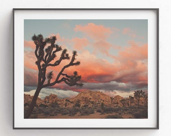 Joshua Tree Sunset Photograph, Desert Print, Southwest Decor, Landscape Photography, Palm Springs, California Wall Art, Wedding Gift