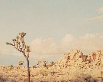 Joshua Tree photograph, desert wall art print, California baby nursery, Southwest decor, mint blue, landscape photography, Myan Soffia