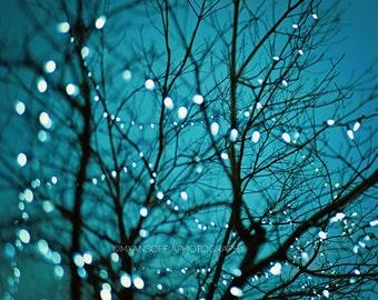 tree lights photo, blue baby nursery art, bokeh photography, night photo, midnight blue decor, surreal, twinkle lights, winter, magical