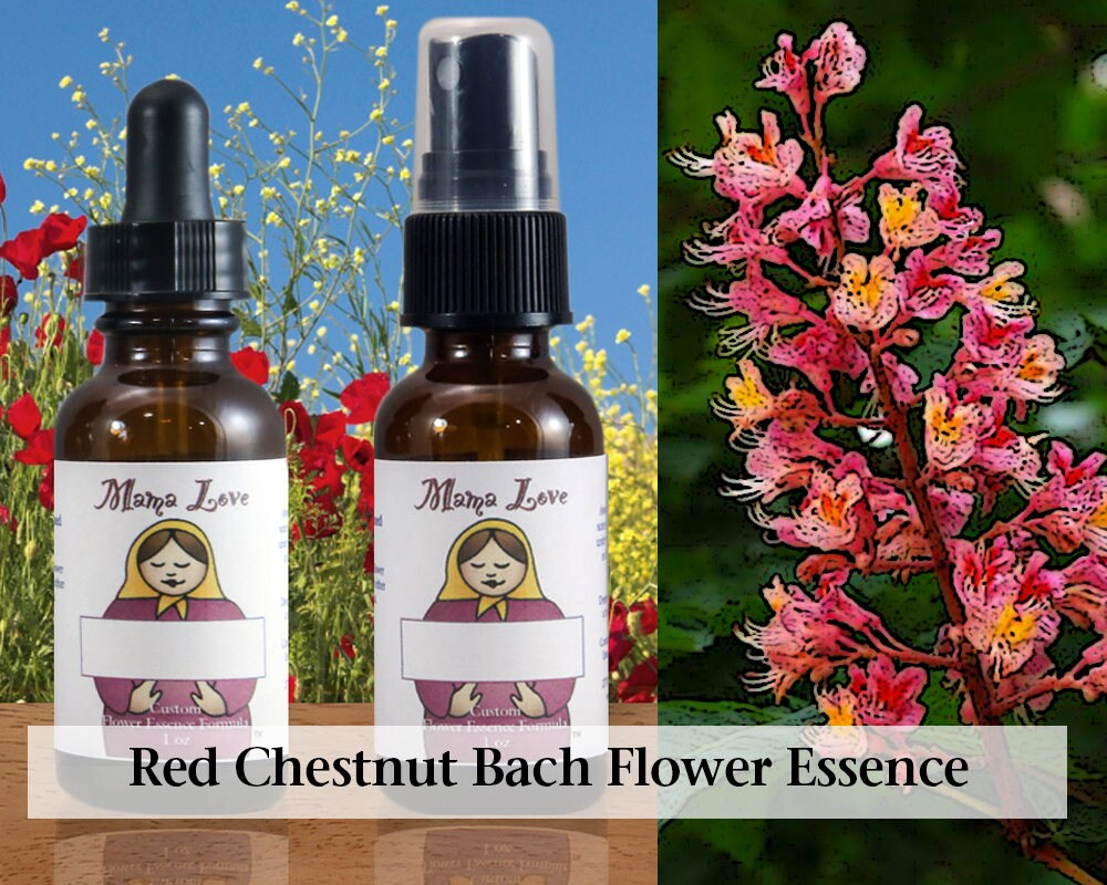 Red Chestnut Bach Flower Essence Reiki Infused 1 Oz Dropper Etsy