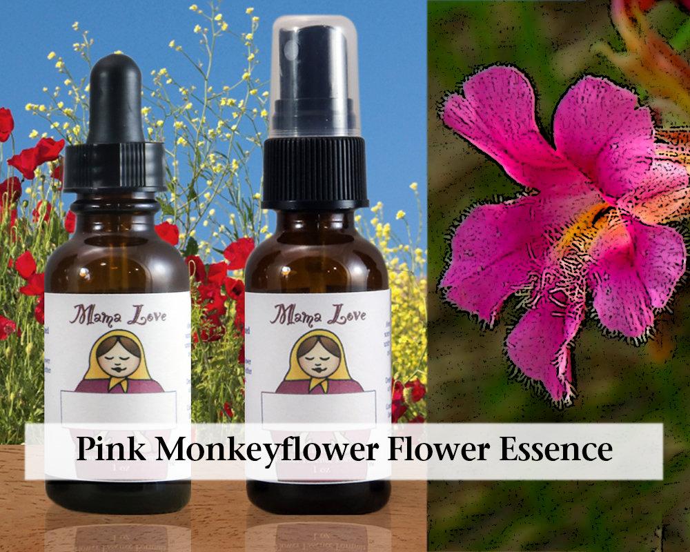 Pink Monkeyflower Flower Essence 1 Oz Dropper Or Spray For Etsy