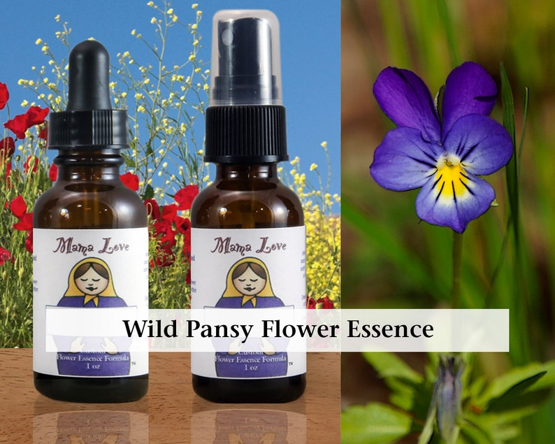 Wild Pansy Flower Essence 1 or 2 oz Dropper or Spray Aura image 0
