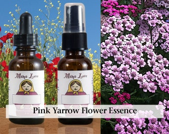 Pink Yarrow Flower Essence, 1 oz Dropper or Spray for Loving with Appropriate Boundaries, Addressing Oversensitivity, Codependency
