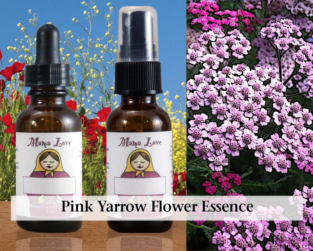 Pink Yarrow Flower Essence 1 Oz Dropper Or Spray For Loving Etsy