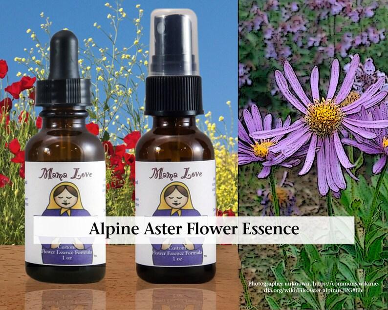 Alpine Aster Flower Essence Dropper or Spray Aura Mist for image 0