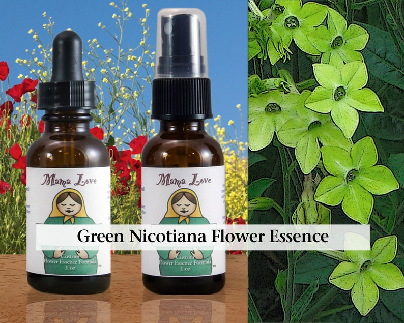 Green Nicotiana Flower Essence Dropper or Spray Aura Mist for image 0
