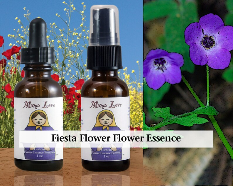 Fiesta Flower Flower Essence Dropper or Spray Aura Mist for image 0