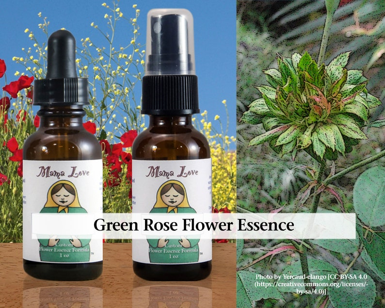 Green Rose Flower Essence Dropper or Spray Aura Mist for the image 0
