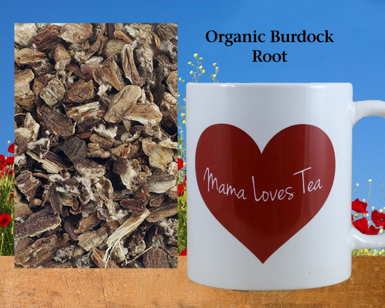 Organic Burdock Root Herb Tea Herbal Ingredient Food Craft image 0