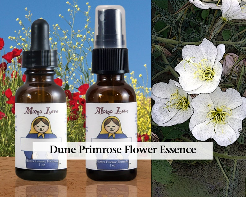 Dune Primrose Flower Essence Dropper or Spray Aura Mist for image 0
