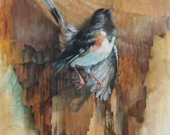 Original Oil Painting Towhee Georgia Bird by Kristina Laurendi Havens