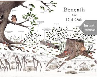 DIGITAL Poster Download - Beneath the Old Oak - 12 x 18 or 11 x 17 - Printable Nature Art, Charlotte Mason, Montessori, Educational