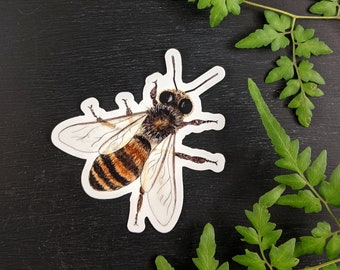 Honey Bee Waterproof Sticker