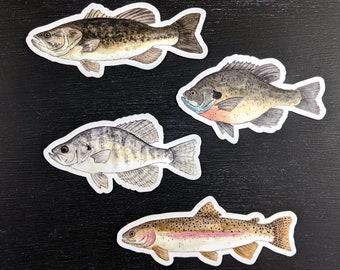 Freshwater Fish WATERPROOF Stickers
