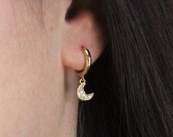 Tiny CZ Charm &  Hoop Earrings