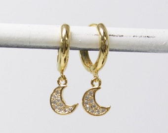 Tiny CZ Charm &  Hoop Earrings