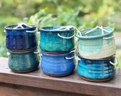 Medium sized Hanging Pottery House planter (ships free)