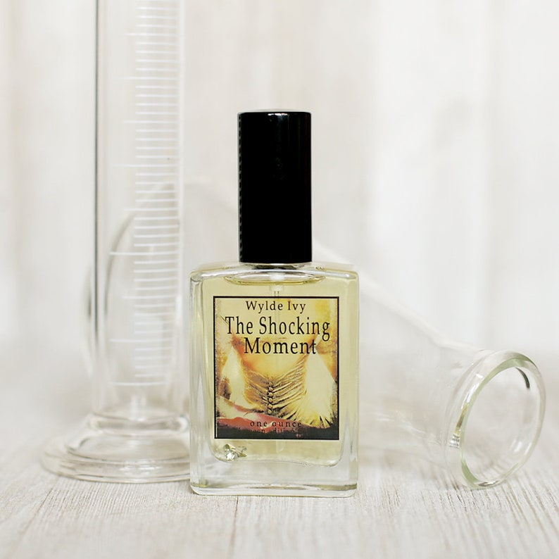 The Shocking Moment Perfume  Limited Edition Inspired by image 0