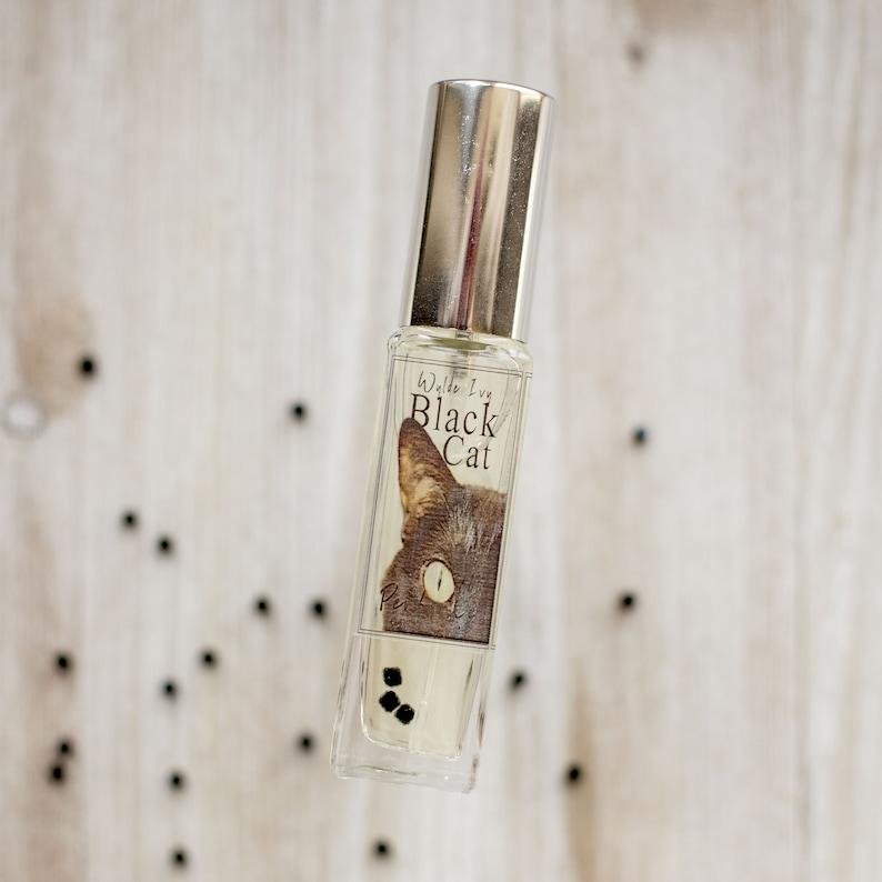 Black Cat No. 13 Perfume Notes of Vanilla Spice Patchouli image 0