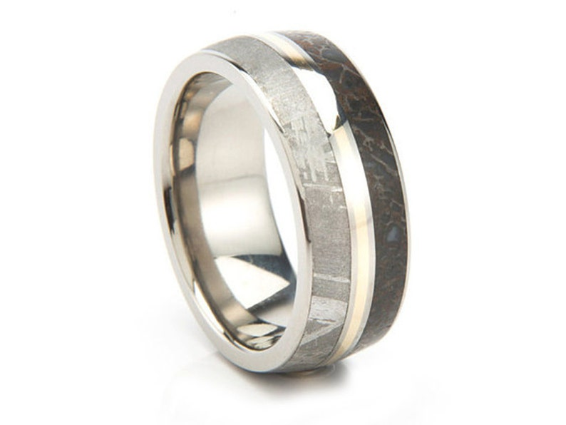 67a703731e9a7 Meteorite Ring, Dinosaur Bone Wedding Band With a 14k Yellow Gold Pinstripe