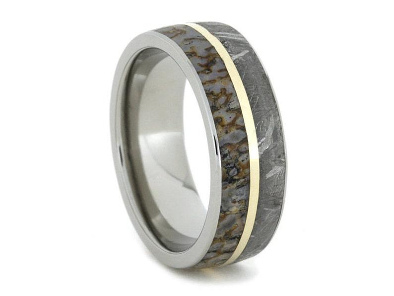 2d5e084047f35 Meteorite Ring, Dinosaur Bone Wedding Band