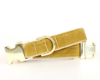 Autumn Velvet Dog Collar in Amber - Fall Dog Collar in Gold Velveteen - Classic Velvet - Vintage Style